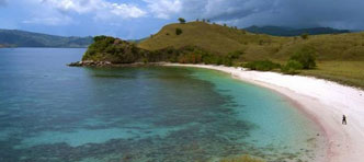 Tenzing Travel | Komodo, the Dragon Experience
