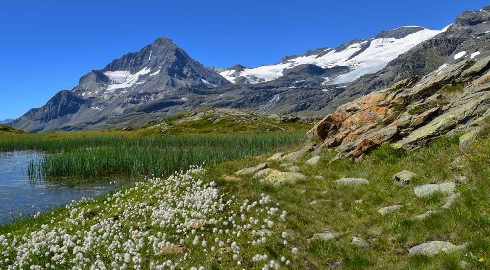 Vanoise National Park, Franse Alpen